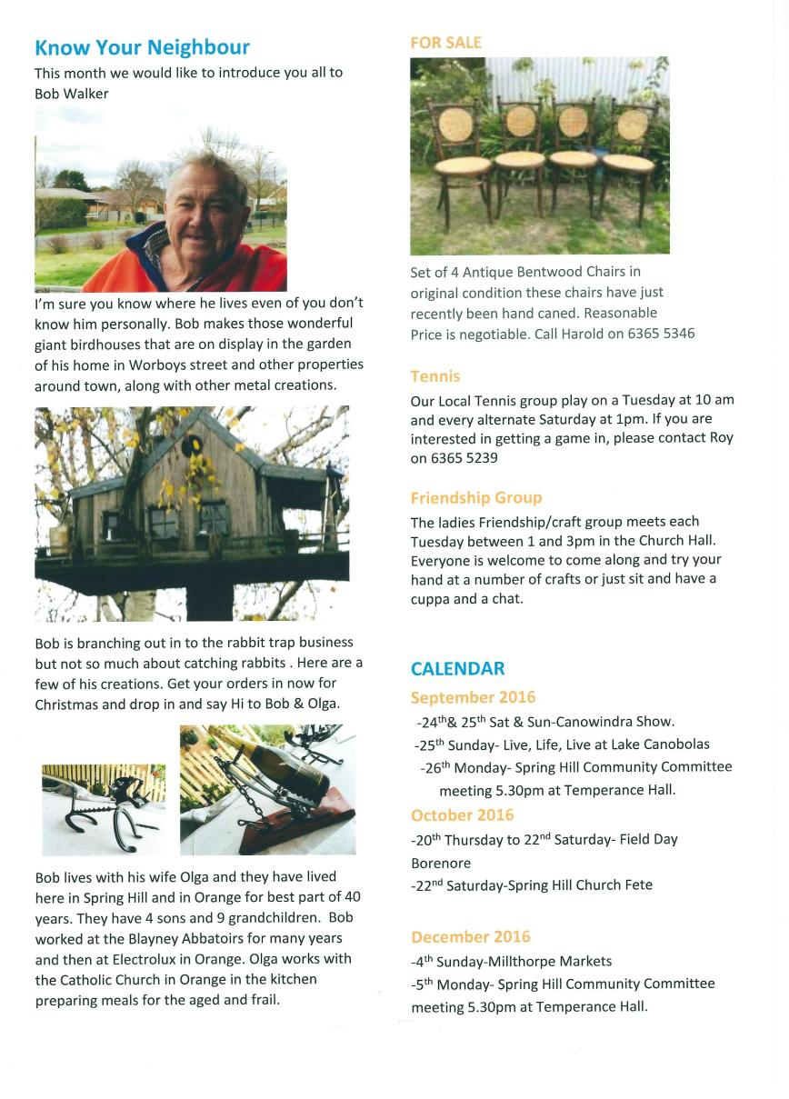 Spring Hill Newsletter - July 16 - Page 2