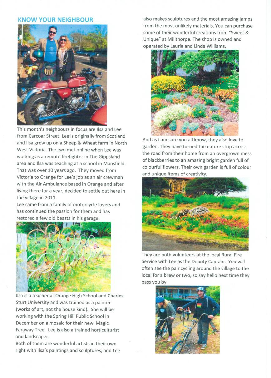 spring-hill-newsletter-nov-16-page-3